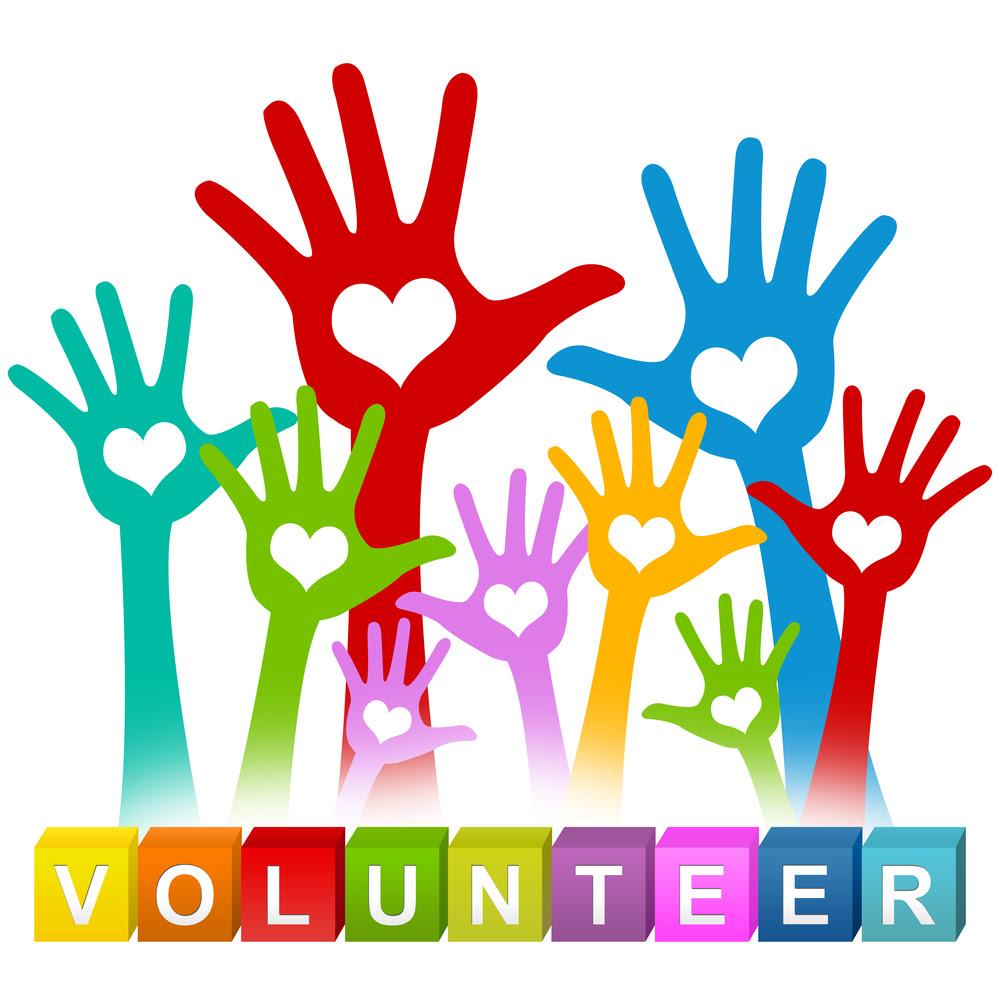Nest 2019: We need volunteers!
