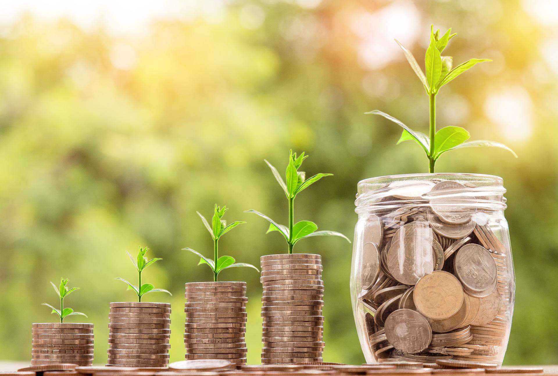 Nest 2018 Financial Report